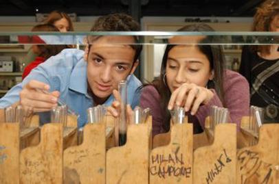 IB Diploma in Experimental Sciences