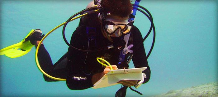 Career in Marine Ecology
