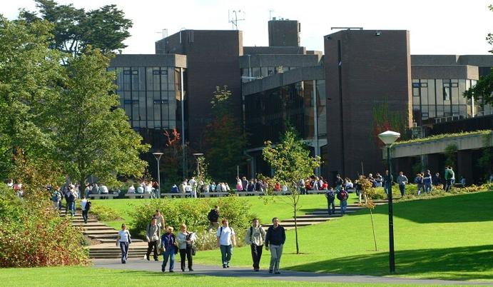 bachelor's degree in Ireland