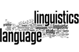Linguistics Studies