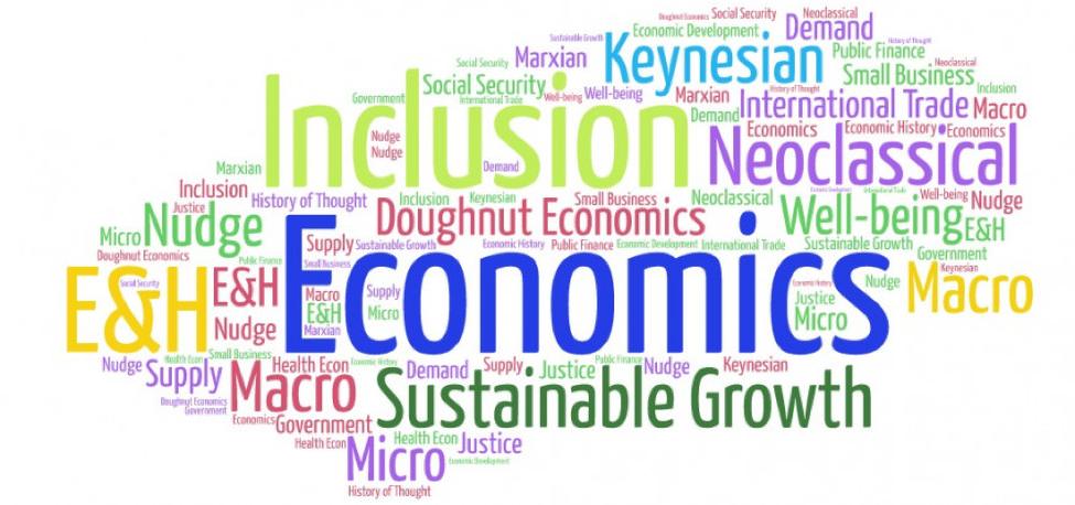 study economics