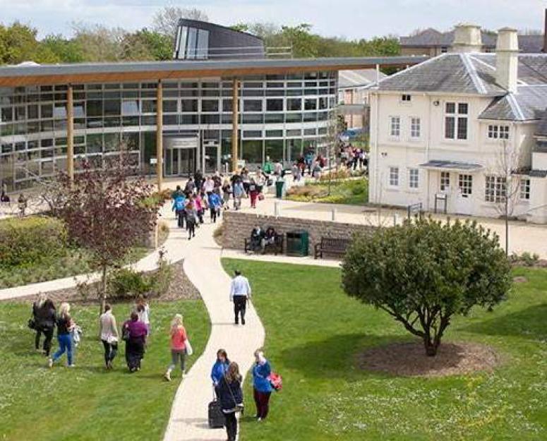 study in UK degree program